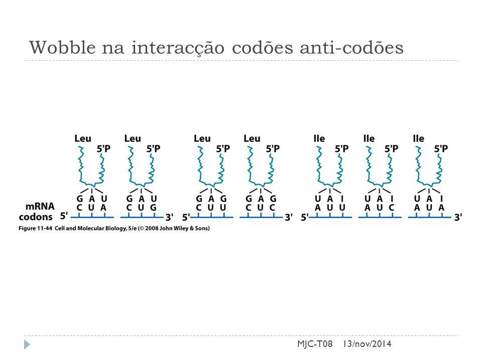Wobble na interacção codões anti-codões 13/nov/2014MJC-T08