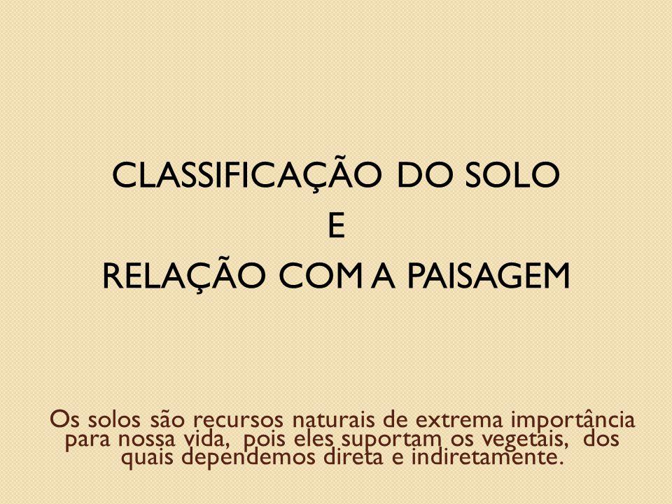 Sistemas de Classificação de Solos Soil Survey Staff (Americano) FAO/UNESCO (Internacional) SiBCS (Brasileiro) Brasil (1960) Camargo et al (1987) EMBRAPA (1999) EMBRAPA (2006)