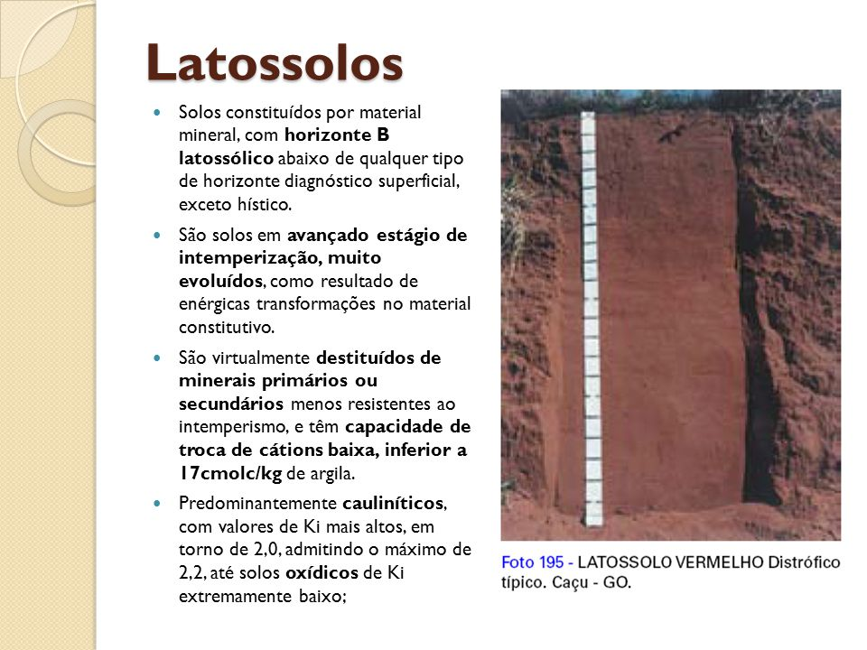 Latossolos Solos constituídos por material mineral, com horizonte B latossólico abaixo de qualquer tipo de horizonte diagnóstico superficial, exceto h