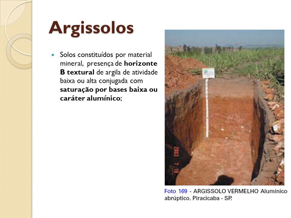 Argissolos Solos constituídos por material mineral, presença de horizonte B textural de argila de atividade baixa ou alta conjugada com saturação por