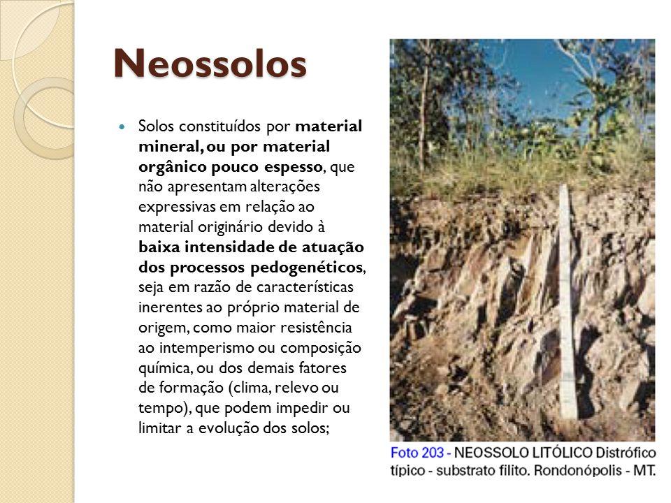 Neossolos Solos constituídos por material mineral, ou por material orgânico pouco espesso, que não apresentam alterações expressivas em relação ao mat