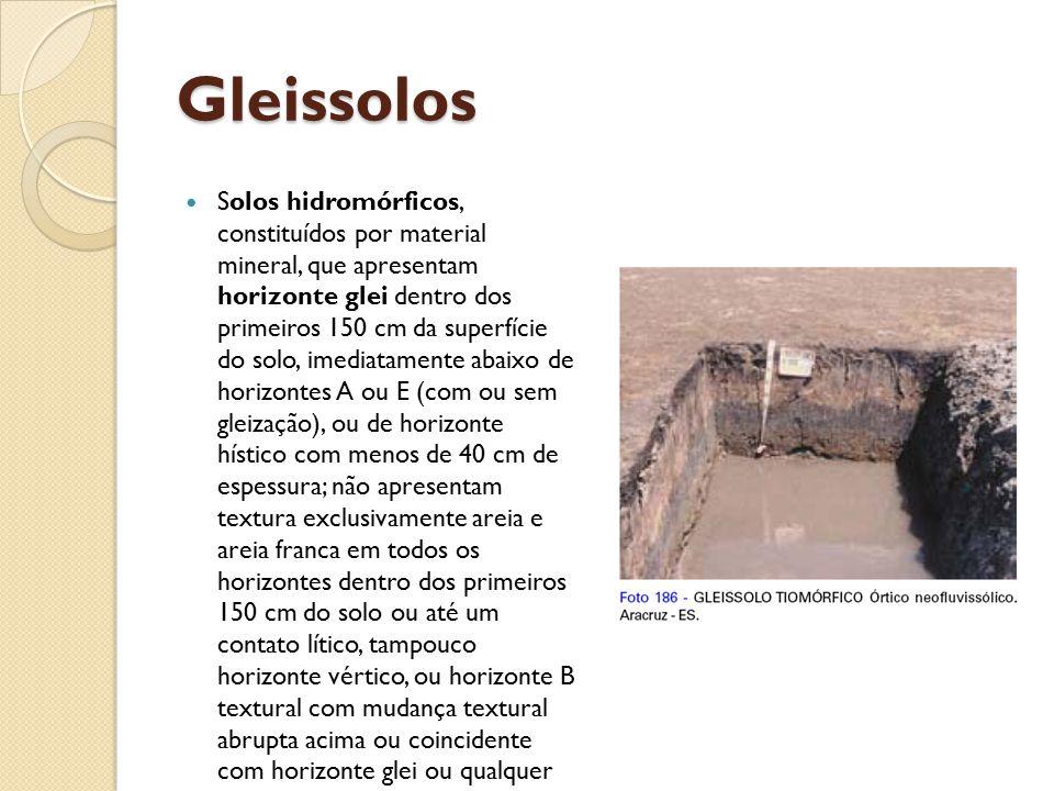 Gleissolos Solos hidromórficos, constituídos por material mineral, que apresentam horizonte glei dentro dos primeiros 150 cm da superfície do solo, im