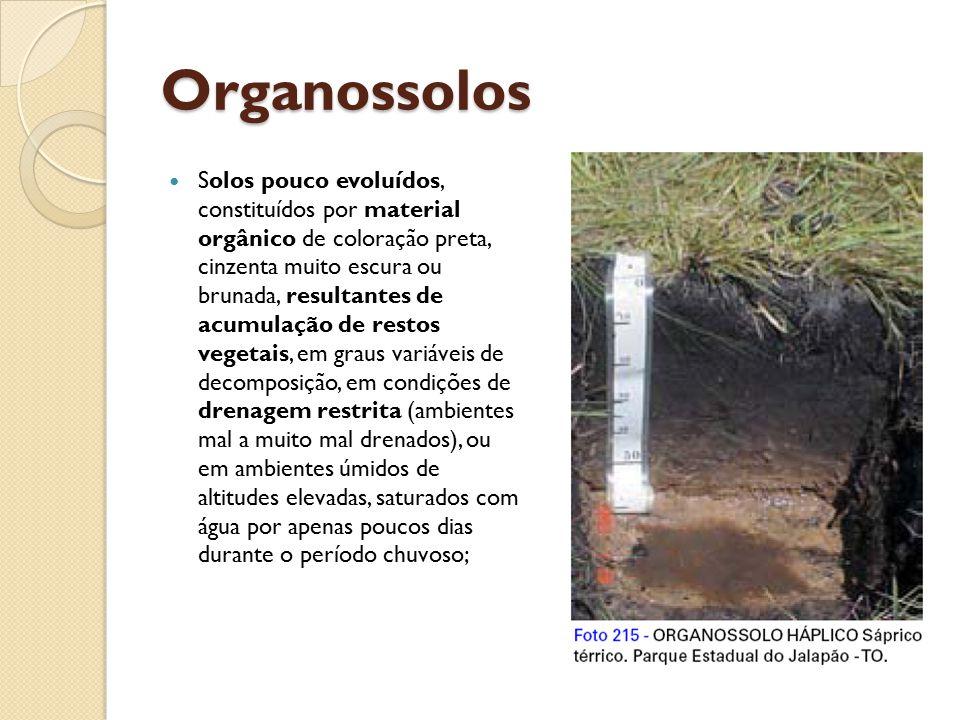 Organossolos Solos pouco evoluídos, constituídos por material orgânico de coloração preta, cinzenta muito escura ou brunada, resultantes de acumulação