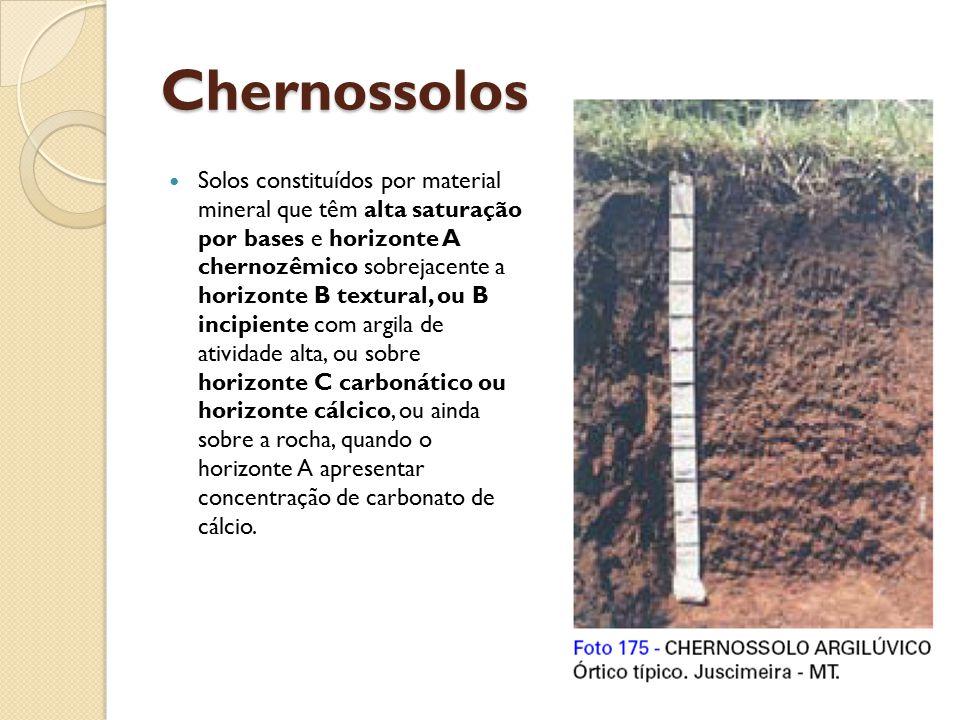 Chernossolos Solos constituídos por material mineral que têm alta saturação por bases e horizonte A chernozêmico sobrejacente a horizonte B textural,