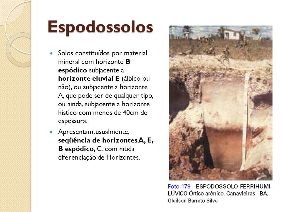 Espodossolos Solos constituídos por material mineral com horizonte B espódico subjacente a horizonte eluvial E (álbico ou não), ou subjacente a horizo