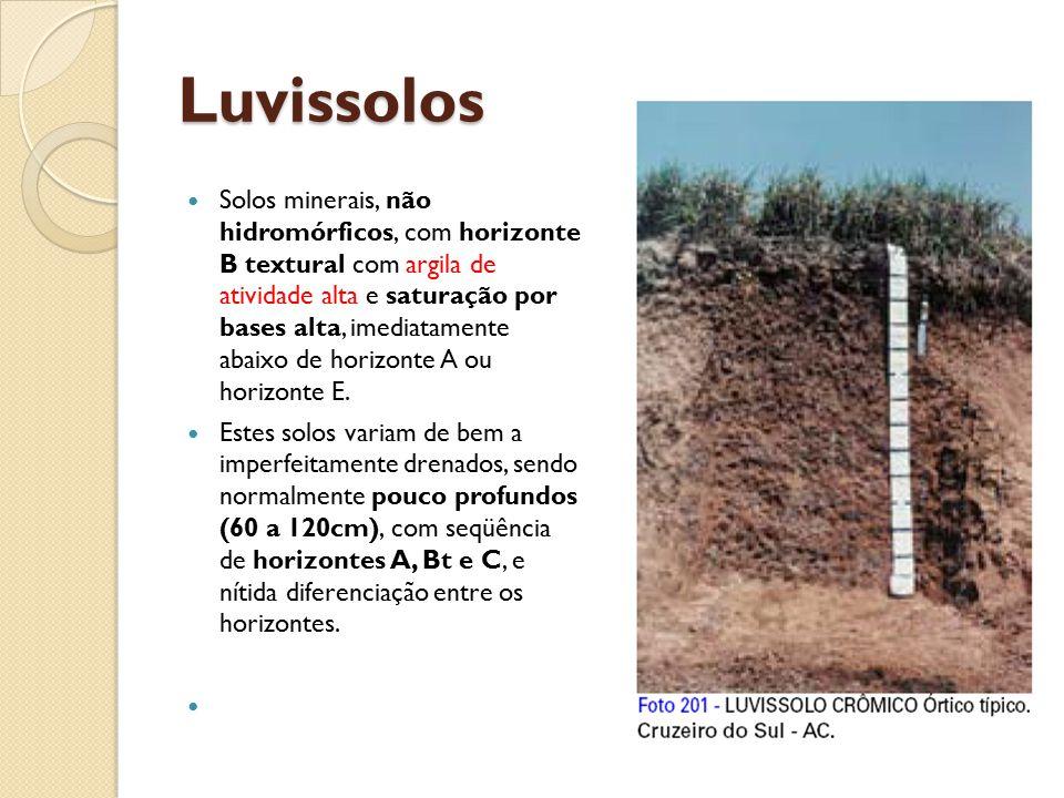 Luvissolos Solos minerais, não hidromórficos, com horizonte B textural com argila de atividade alta e saturação por bases alta, imediatamente abaixo d