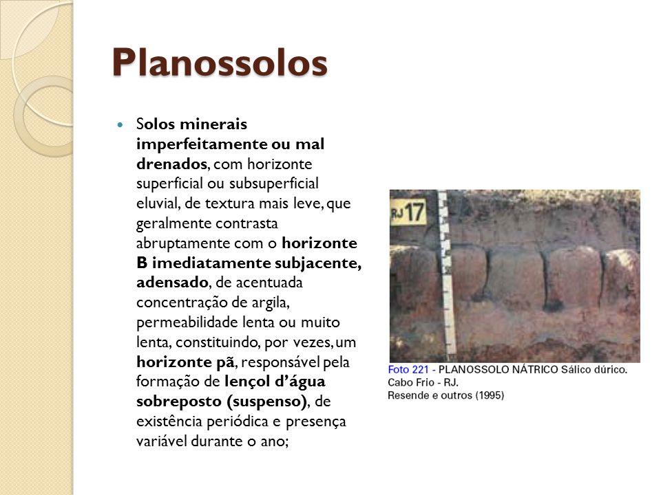 Planossolos Solos minerais imperfeitamente ou mal drenados, com horizonte superficial ou subsuperficial eluvial, de textura mais leve, que geralmente