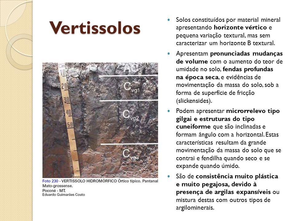 Vertissolos Solos constituídos por material mineral apresentando horizonte vértico e pequena variação textural, mas sem caracterizar um horizonte B te