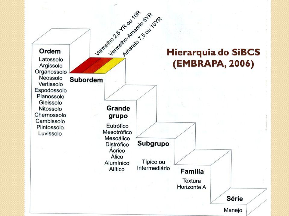 Horizontes Diagnósticos - Superficiais Horizontes superficiais Aspectos pedológicos A ChernozêmicoCor escura, horizonte relativamente espesso, carbono orgânico ≥ 6%, P 2 O 5 (ac cítrico) <250 mg/kg, V≥65% A ProeminenteIdem A chernozêmico, mas deve apresentar V<65%.