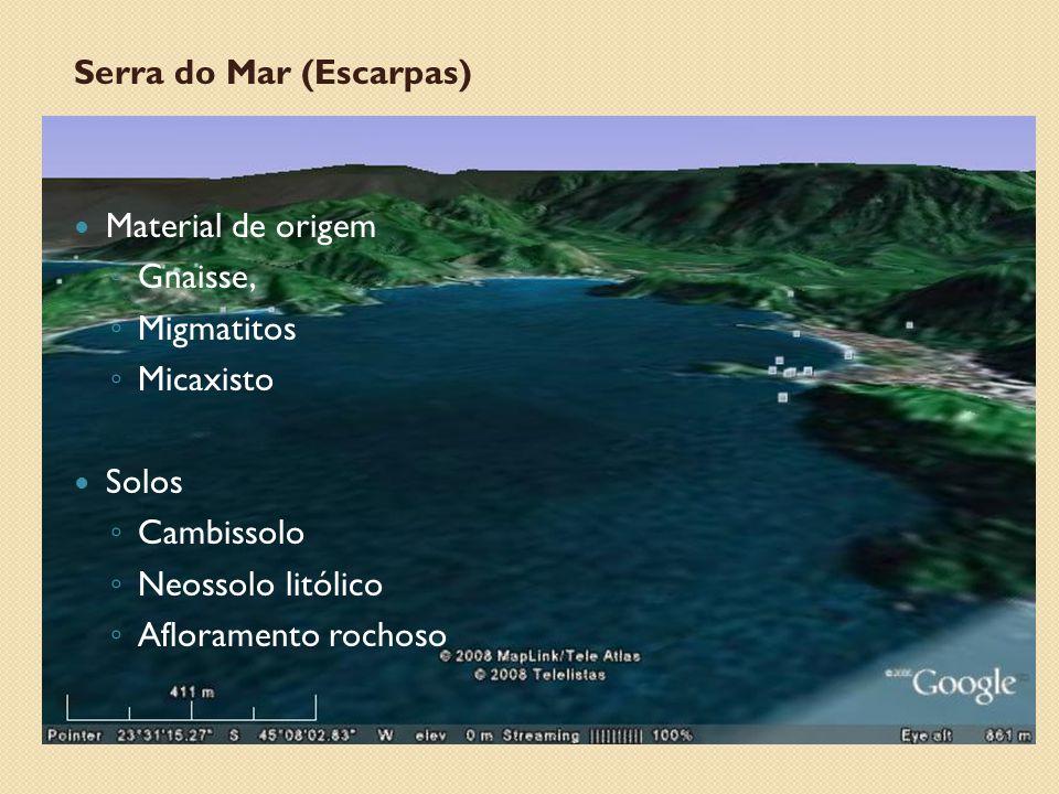 Serra do Mar (Escarpas) Material de origem ◦ Gnaisse, ◦ Migmatitos ◦ Micaxisto Solos ◦ Cambissolo ◦ Neossolo litólico ◦ Afloramento rochoso