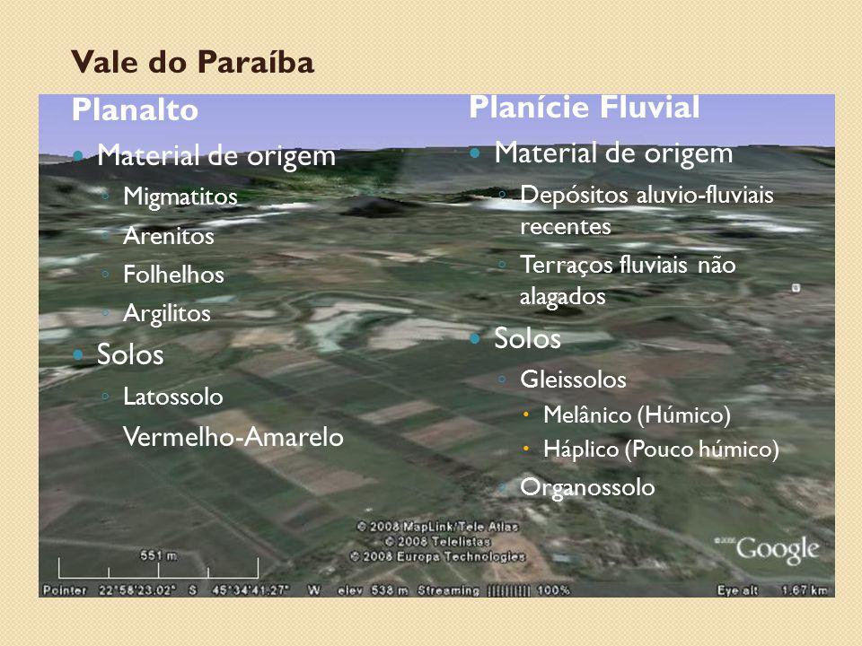 Vale do Paraíba Planalto Material de origem ◦ Migmatitos ◦ Arenitos ◦ Folhelhos ◦ Argilitos Solos ◦ Latossolo Vermelho-Amarelo Planície Fluvial Materi