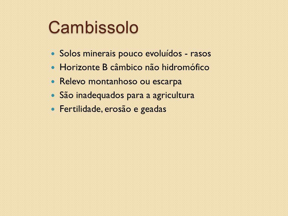 Cambissolo Solos minerais pouco evoluídos - rasos Horizonte B câmbico não hidromófico Relevo montanhoso ou escarpa São inadequados para a agricultura