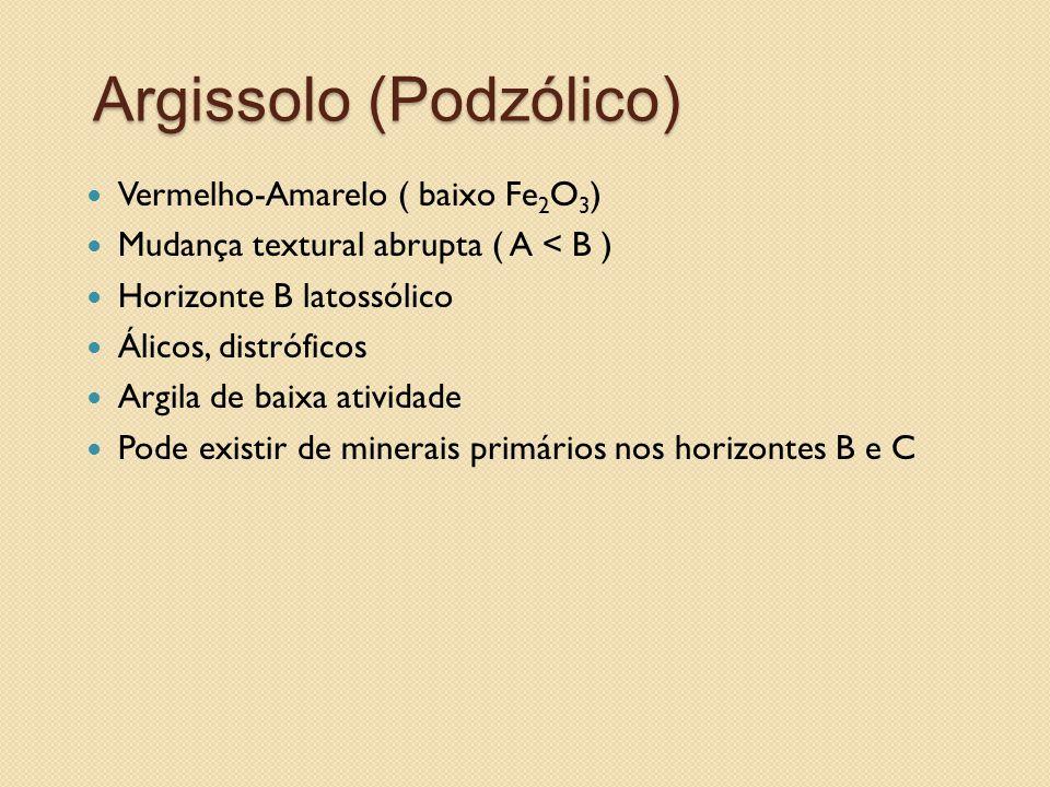 Argissolo (Podzólico) Vermelho-Amarelo ( baixo Fe 2 O 3 ) Mudança textural abrupta ( A < B ) Horizonte B latossólico Álicos, distróficos Argila de bai
