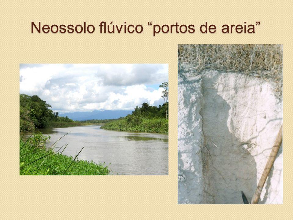 """Neossolo flúvico """"portos de areia"""""""