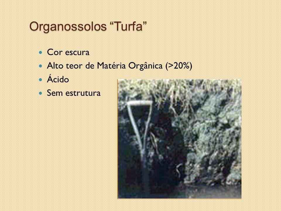 """Organossolos """"Turfa"""" Cor escura Alto teor de Matéria Orgânica (>20%) Ácido Sem estrutura"""