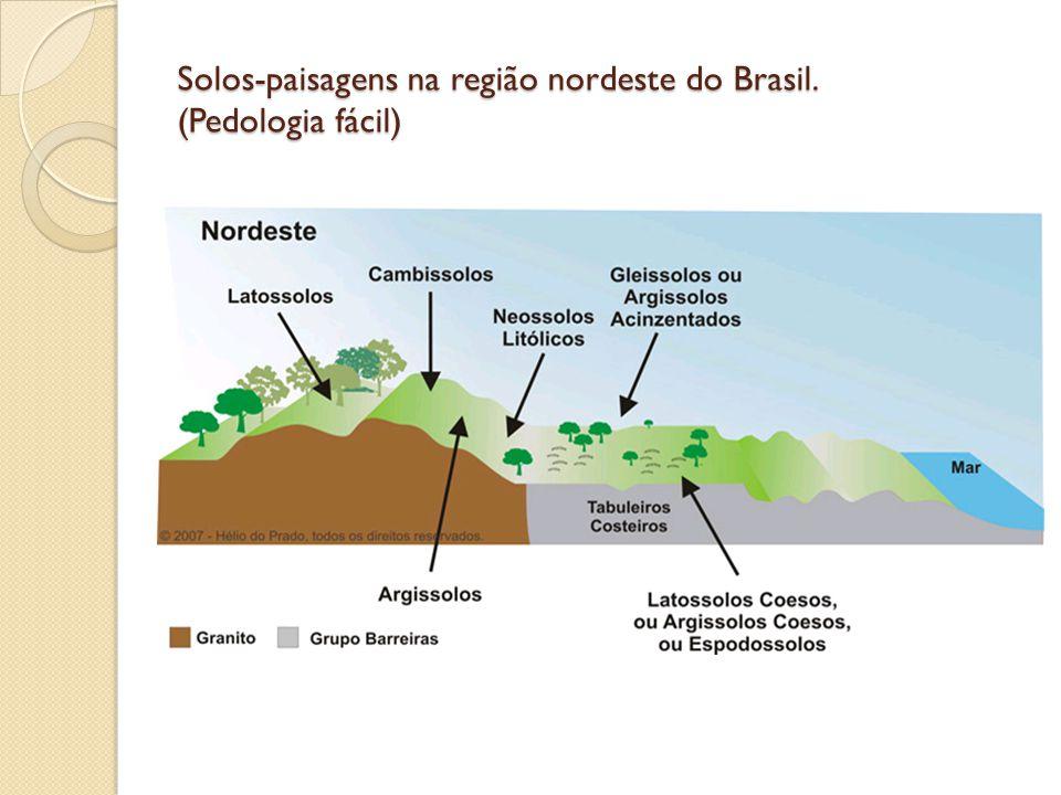 Solos-paisagens na região nordeste do Brasil. (Pedologia fácil)