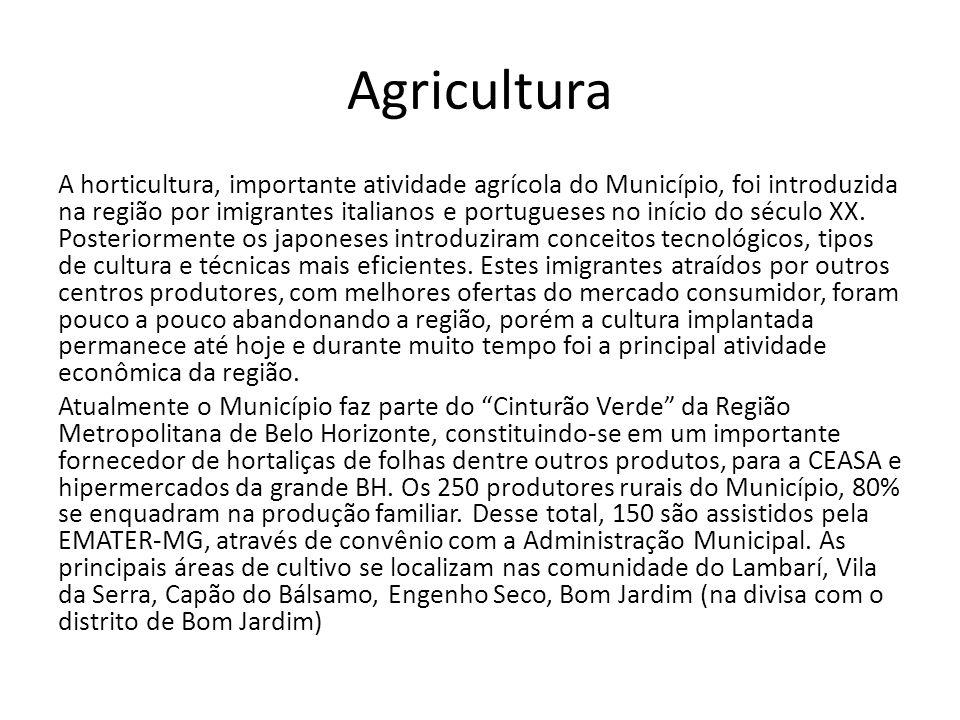 Agricultura A horticultura, importante atividade agrícola do Município, foi introduzida na região por imigrantes italianos e portugueses no início do século XX.