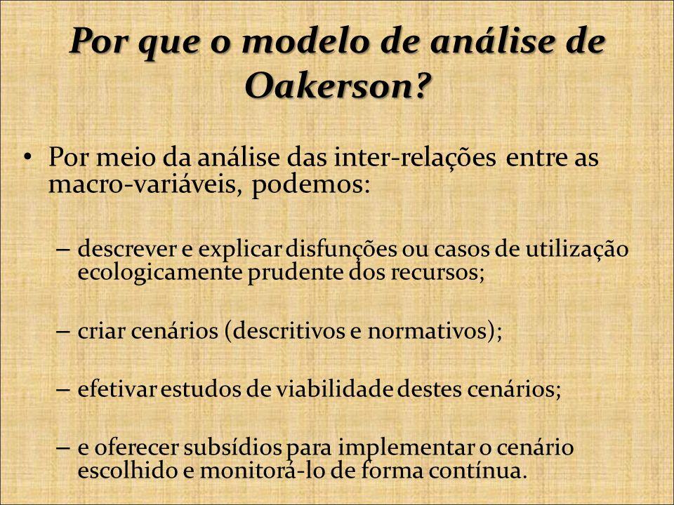 Por que o modelo de análise de Oakerson.