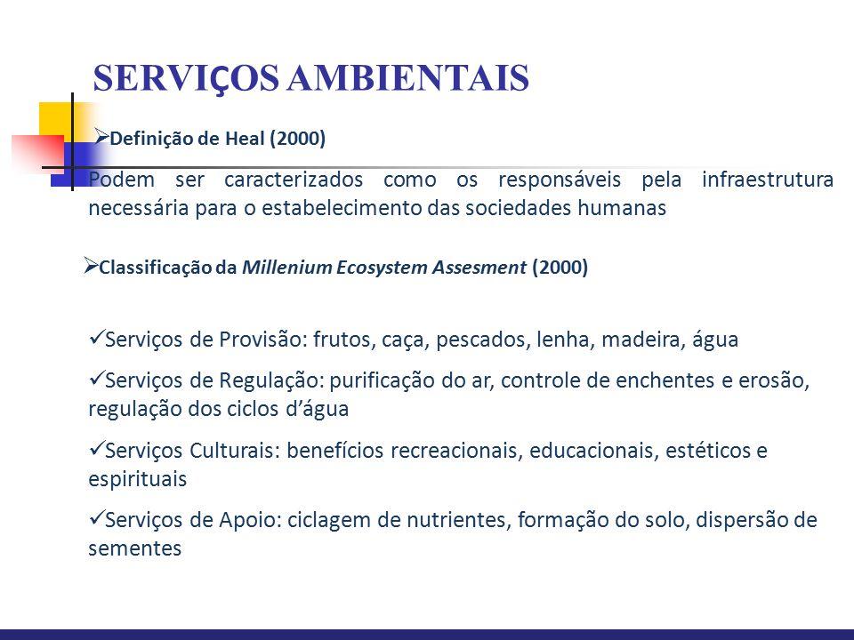  Definição de Heal (2000)  Classificação da Millenium Ecosystem Assesment (2000) Podem ser caracterizados como os responsáveis pela infraestrutura n