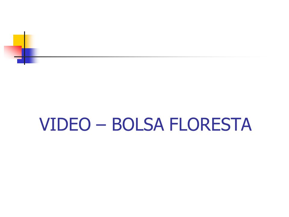 VIDEO – BOLSA FLORESTA