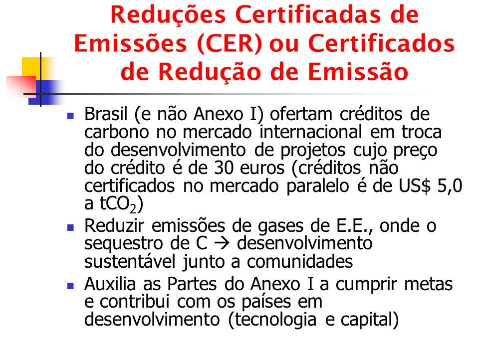 Reduções Certificadas de Emissões (CER) ou Certificados de Redução de Emissão Brasil (e não Anexo I) ofertam créditos de carbono no mercado internacio