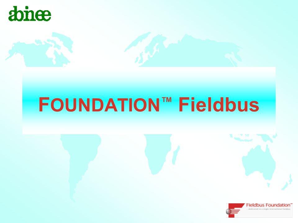 F OUNDATION ™ Fieldbus