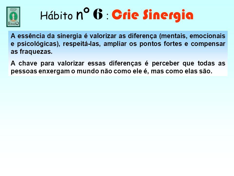 Hábito nº 6 : Crie Sinergia A essência da sinergia é valorizar as diferença (mentais, emocionais e psicológicas), respeitá-las, ampliar os pontos fort