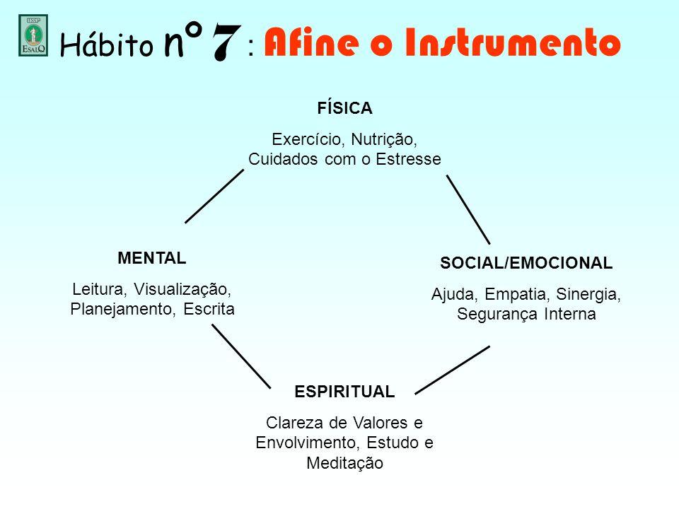 Hábito nº 7 : Afine o Instrumento FÍSICA Exercício, Nutrição, Cuidados com o Estresse MENTAL Leitura, Visualização, Planejamento, Escrita ESPIRITUAL C