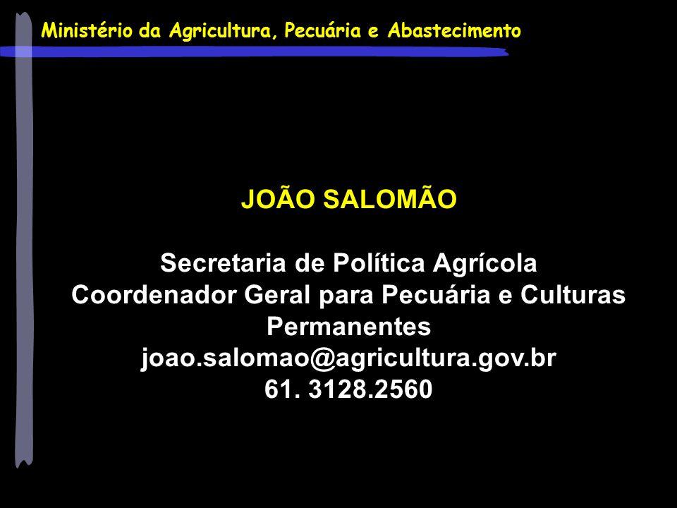 Ministério da Agricultura, Pecuária e Abastecimento JOÃO SALOMÃO Secretaria de Política Agrícola Coordenador Geral para Pecuária e Culturas Permanente