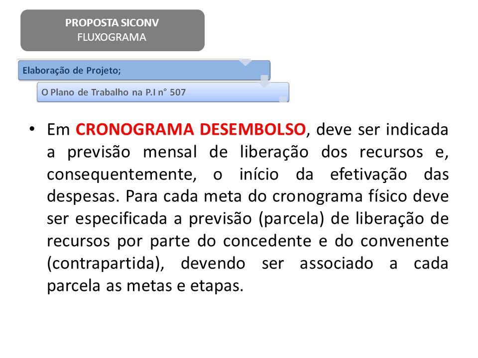 Em CRONOGRAMA DESEMBOLSO, deve ser indicada a previsão mensal de liberação dos recursos e, consequentemente, o início da efetivação das despesas. Para