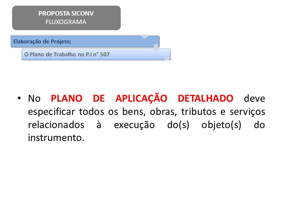 No PLANO DE APLICAÇÃO DETALHADO deve especificar todos os bens, obras, tributos e serviços relacionados à execução do(s) objeto(s) do instrumento. PRO