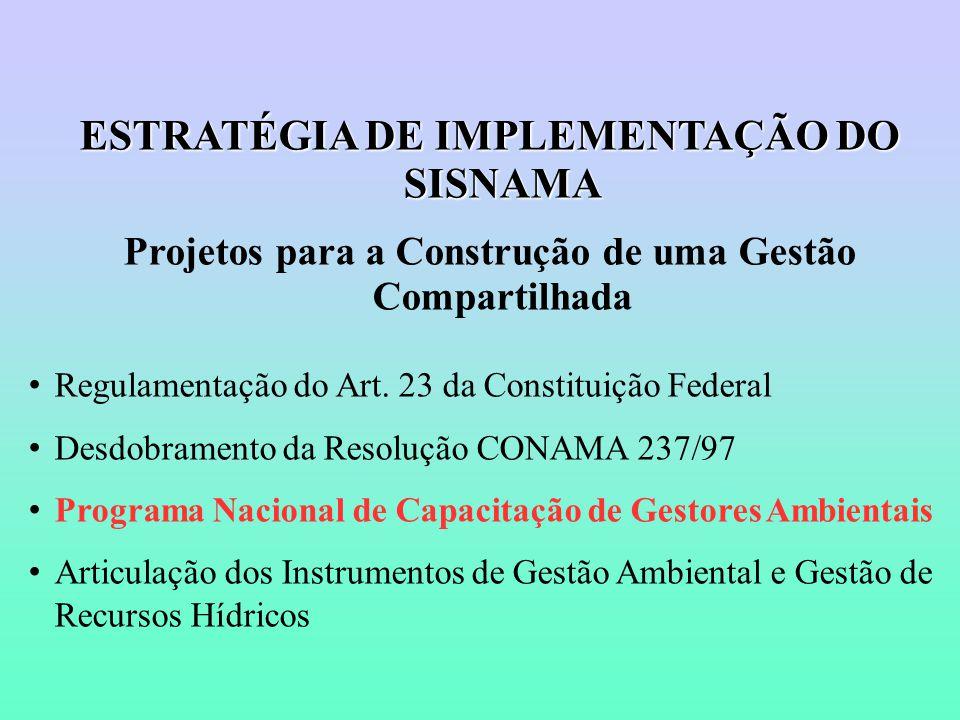 ESTRATÉGIA DE IMPLEMENTAÇÃO DO SISNAMA Projetos para a Construção de uma Gestão Compartilhada Regulamentação do Art.