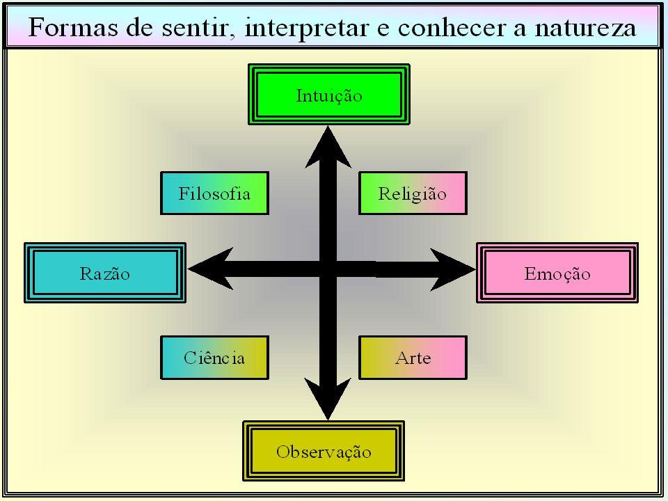 Tipos de Variáveis A Noção de variável em estudos empíricos