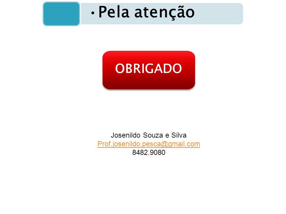 Pela atenção OBRIGADO Josenildo Souza e Silva Prof.josenildo.pesca@gmail.com 8482.9080