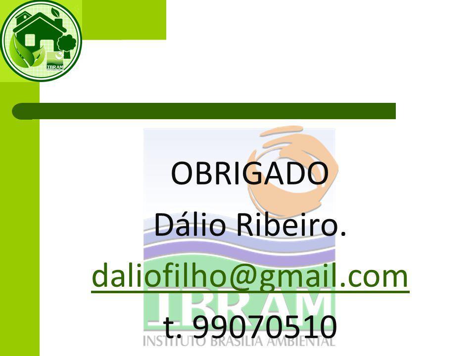 OBRIGADO Dálio Ribeiro. daliofilho@gmail.com t. 99070510