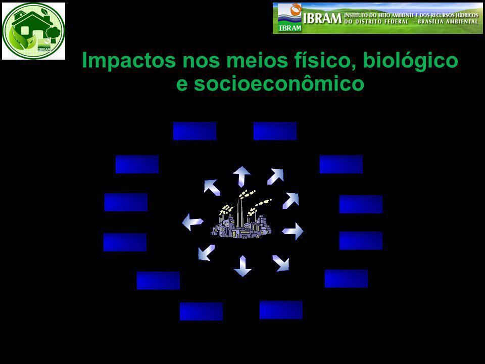 Impactos nos meios físico, biológico e socioeconômico
