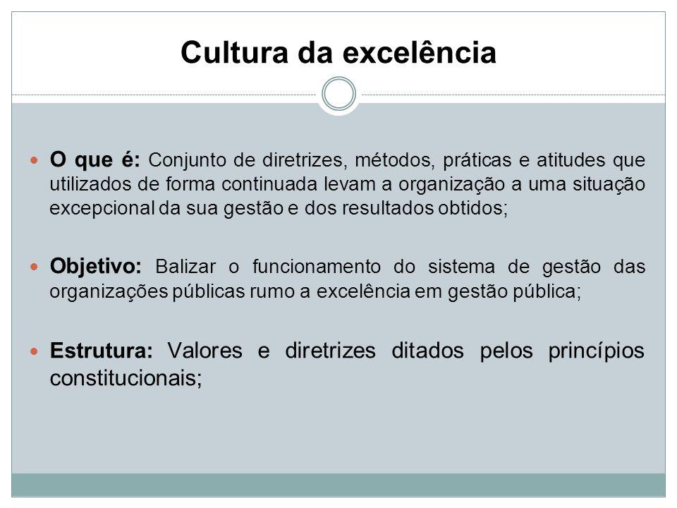 Cultura da excelência O que é: Conjunto de diretrizes, métodos, práticas e atitudes que utilizados de forma continuada levam a organização a uma situa