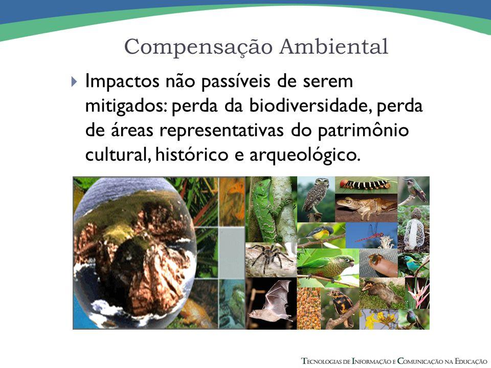 Compensação Ambiental  Impactos não passíveis de serem mitigados: perda da biodiversidade, perda de áreas representativas do patrimônio cultural, histórico e arqueológico.