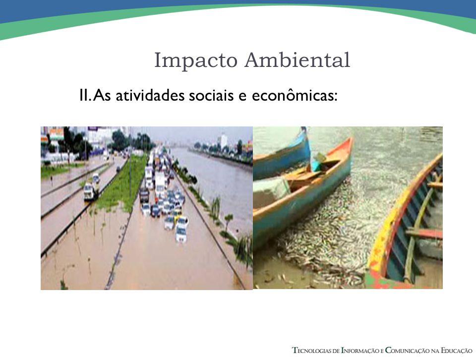 III. A biota; Impacto Ambiental