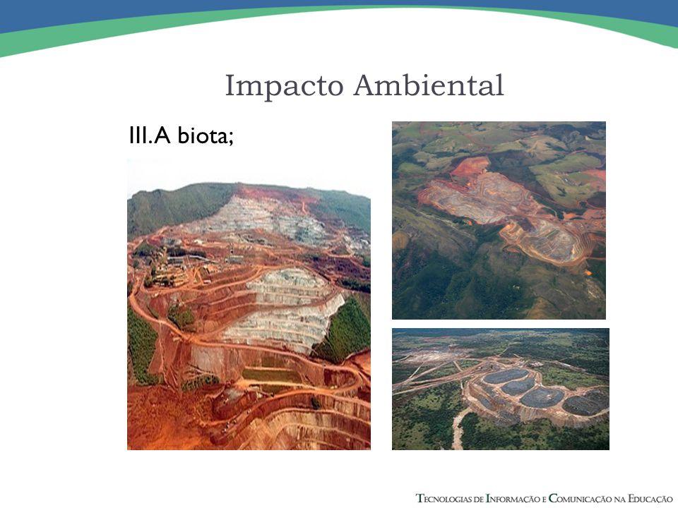 IV. As condições estéticas e sanitárias do meio ambiente; Impacto Ambiental