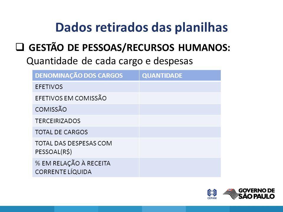 Dados retirados das planilhas  GESTÃO DE PESSOAS/RECURSOS HUMANOS: Quantidade de cada cargo e despesas DENOMINAÇÃO DOS CARGOSQUANTIDADE EFETIVOS EFET