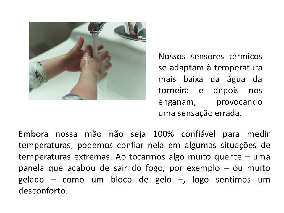 Nossos sensores térmicos se adaptam à temperatura mais baixa da água da torneira e depois nos enganam, provocando uma sensação errada. Embora nossa mã