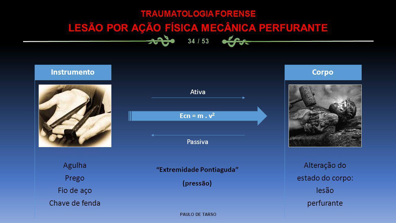 PAULO DE TARSO TRAUMATOLOGIA FORENSE LESÃO POR AÇÃO FÍSICA MECÂNICA PERFURANTE 34 / 53 Agulha Prego Fio de aço Chave de fenda Instrumento Alteração do