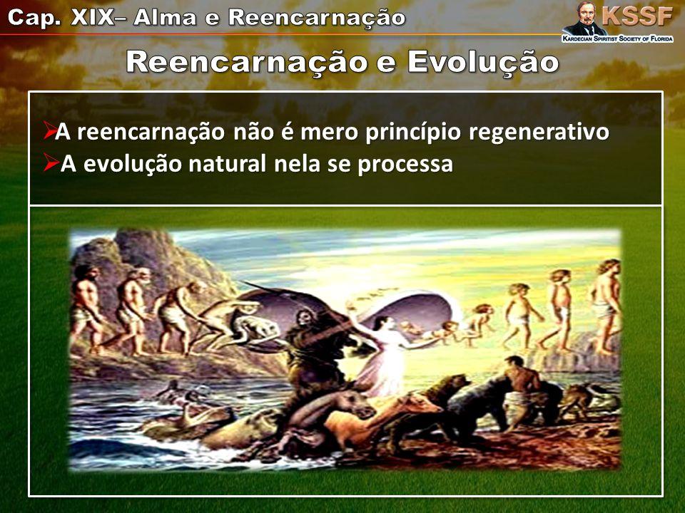  A reencarnação não é mero princípio regenerativo  A evolução natural nela se processa
