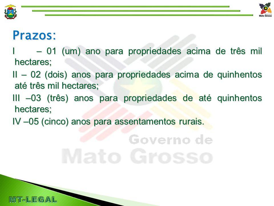 Prazos: I – 01 (um) ano para propriedades acima de três mil hectares; II – 02 (dois) anos para propriedades acima de quinhentos até três mil hectares; III –03 (três) anos para propriedades de até quinhentos hectares; IV –05 (cinco) anos para assentamentos rurais.