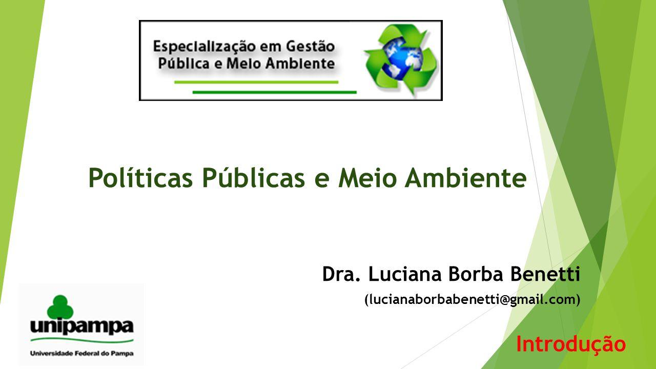 Ementa  Concepções e Conceitos em Políticas Públicas  Visões do Estado e Análise Política  Poder e tomada de decisão  Modelos de tomada de decisão  Implementação de Políticas Públicas Ambientais  Organizações e Políticas Públicas Ambientais  Planejamento Público em Políticas Públicas Ambientais  Análise de Políticas Públicas Ambientais