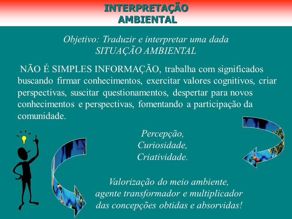 INTERPRETAÇÃO AMBIENTAL AMBIENTAL Objetivo: Traduzir e interpretar uma dada SITUAÇÃO AMBIENTAL NÃO É SIMPLES INFORMAÇÃO, trabalha com significados bus