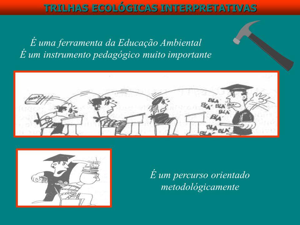 TRILHAS ECOLÓGICAS INTERPRETATIVAS TRILHAS, como meio de interpretação ambiental, visam não somente a transmissão de conhecimentos, mas também propiciam atividades que revelam os significados e as características do ambiente através dos elementos originais, por experiência direta e por meios ilustrativos, sendo assim instrumento básico de programas de educação ao ar livre (Pádua & Tabanez, 1997) (Tilden 1967, Ashbaugh & Kordish 1971 apud Possas, 1999) ÁREAS NATURAIS: laboratórios vivos, salas de aula naturais Experimentação direta; interesse, curiosidade, descoberta.