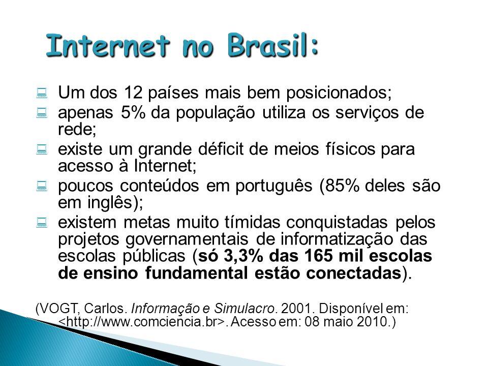  Um dos 12 países mais bem posicionados;  apenas 5% da população utiliza os serviços de rede;  existe um grande déficit de meios físicos para acess
