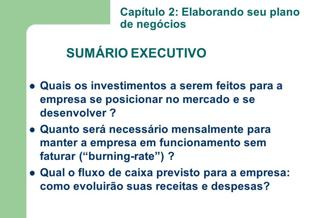 Quais os investimentos a serem feitos para a empresa se posicionar no mercado e se desenvolver ? Quanto será necessário mensalmente para manter a empr